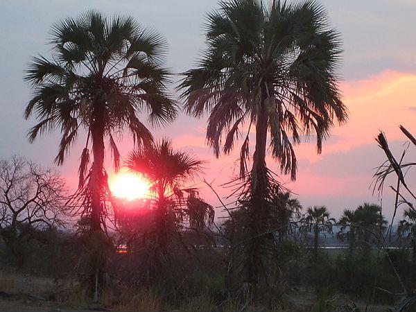 Sunset In Liwonde