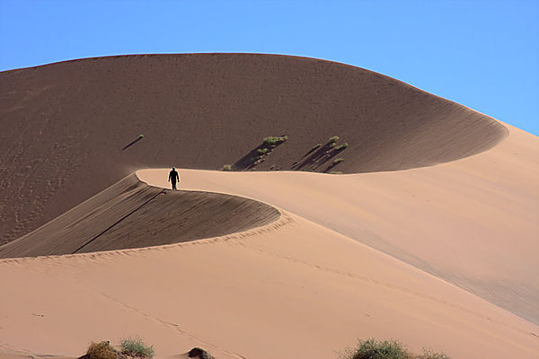 The Dune At Sossusvlei