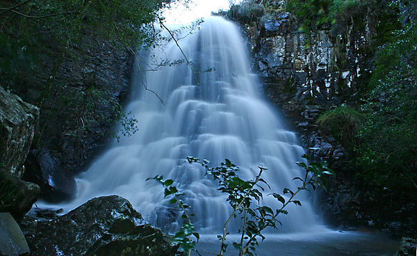 39 Best Images About South Pacific On Pinterest: 39 Steps, Hogsback (south Africa) Photo, King William's
