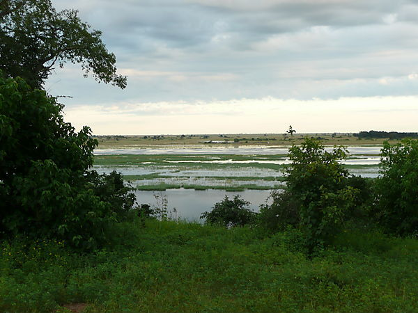 Another Beautiful View Of The Chobe River