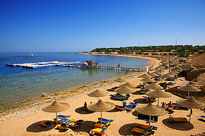 domina coral bay resort and casino sharm el sheikh