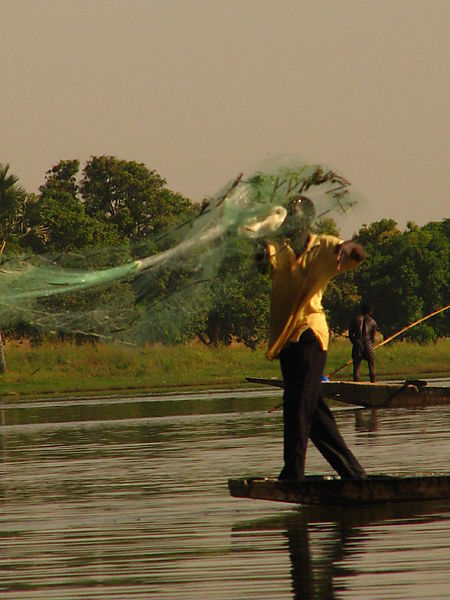 Fisherman On The Niger.
