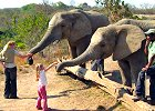 South Africa Kruger Park Family Safari 3 days