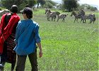 8 DAYS WILDEBEEST MIGRATION - MARA RIVER CROSSING SAFARI