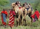 Camel Riding Expedition - Tanzania