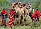 Camel Riding Expedition - Tanzania
