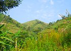Eco tourism in the Rwenzoris