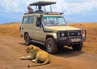 7 day- Budget Camping Safari in Northern Tanzania