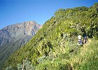 Mount Meru and Mt Kilimanjaro Climb Machame Route