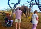 Wheelchair Friendly Big 5 Safari & Adventure