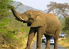 Luxury Safari Hluhluwe Umfolozi Game Reserve