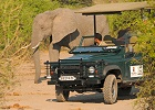 Botswana - Captivating Chobe and Savute