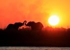 Namibia & Botswana Southern Circle