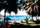 Ylang-Ylang Island of Nosy Be - Madagascar