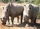 Mpumalanga & Kruger National Park