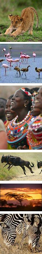 11 Days: Discover Kenya and Tanzania