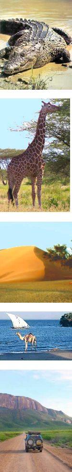 8 Days: Kenya Safari Rift Valley, Desert and Culture