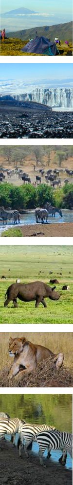 Lemosho Route Kilimanjaro Climb & Tanzania safari