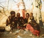 Honey gathering with the Hadzabe men