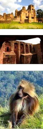 Omo Valley, Gondar and Lalibela Tour