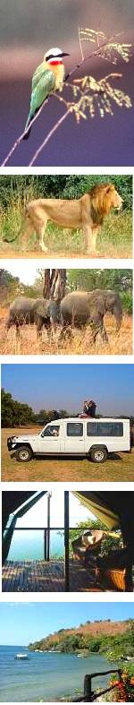 Dzalanyama, Luangwa Park Safari and Lake Malawi