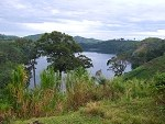 African Jungle Tour Uganda