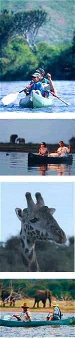 Walking and canoeing Safari - Arusha National Park