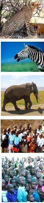 Volunteer Project and Safari in Tanzania