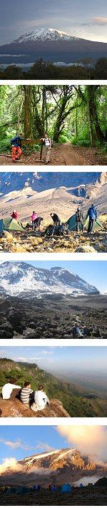 Kilimanjaro Climb - Umbwe Route