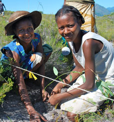 Community Construction in Madagascar