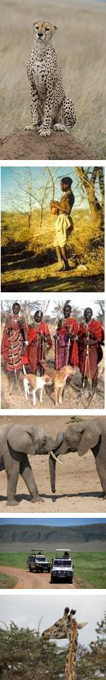 Cultural Tourism & Wildlife Safari in Tanzania - 7 days