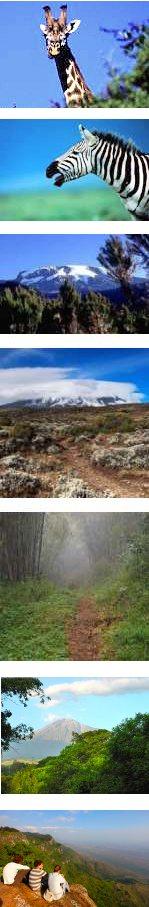 Mountain Hiking, non-summit - Tanzania
