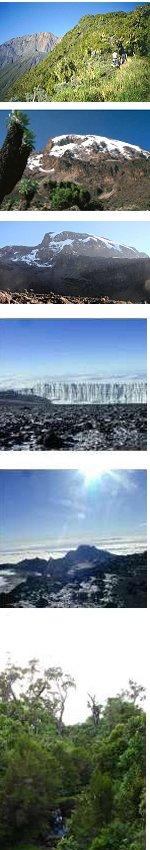 Mount Meru and Mt Kilimanjaro Climb Machame Route