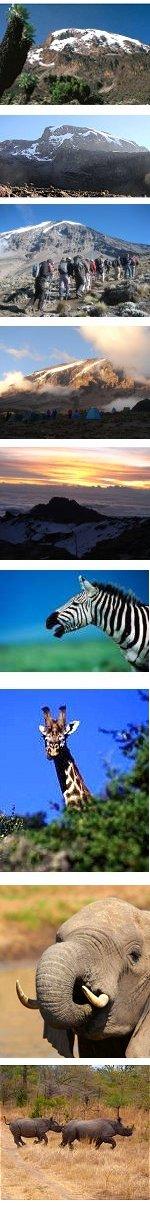Peak of Africa and Wildlife Safari 11 Days