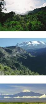 Mount Meru and Mt Kilimanjaro Climb Umbwe Route