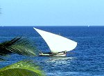 Zanzibar Spice and Stone Town Tours