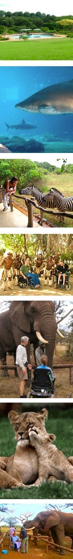 Wheelchair Friendly Big 5 Safari and Zululand