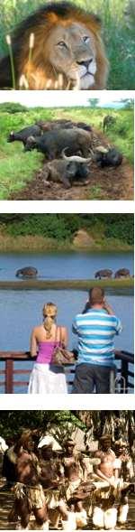 Luxury Safari Hluhluwe Umfolozi Game Reserve