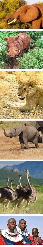 Fixed departure Kenya Safari - 11 days