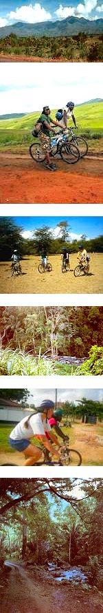 Tanzania, Usambara Mountains Cycling Tour