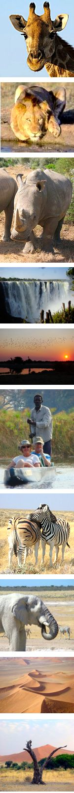 Kruger, Vic Falls, Botswana & Namibia