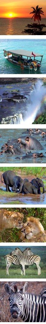 Zanzibar, Victoria Falls & Kruger Overland Safari