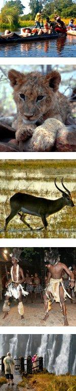 Delta & Chobe Waterways (Accommodated)
