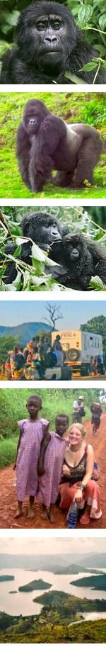 Troop to the Gorillas - Uganda