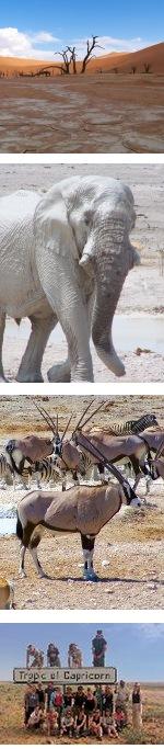 Cape Desert Safari - Cape Town to Windhoek