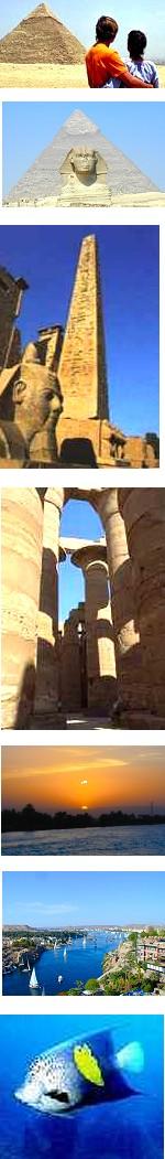 Honeymoon Holiday in Egypt