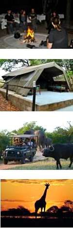 Kruger Park Budget Safari 3-5 Days