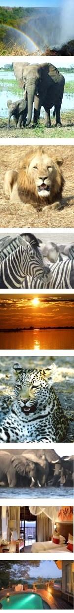Three Countries Safari Zimbabwe Botswana Namibia