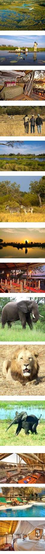 Botswana Safari  - Easy and Affordable