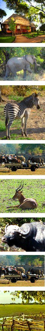 Zambia Luangwa and Zambezi Experience